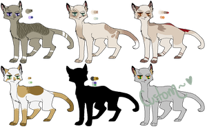 Random Warrior Cat Adopts [OPEN] by ManlyBug