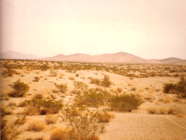 More Mojave Desert by deviantmike423