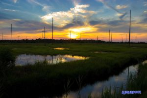 Marsh Sunset by robmurdock
