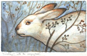 Varying Hare by emla