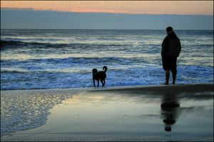 Man and Best Friend by mydigitalmind