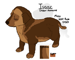 Isaac - Ref - GSD by HannahLouLou