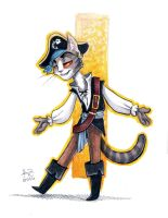 pirate cat by rz250