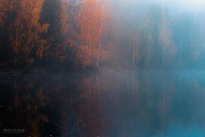 Mirrored autumn by m-eralp