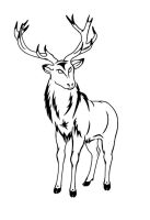 Stag Tattoo by sparkycom