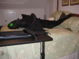 Plush Night Fury Toothless by cfwarrior