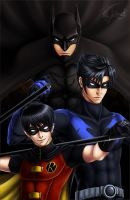 Dick Grayson - from boy to man by GarnetQuyenDinh