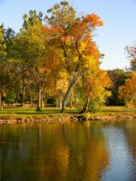 Fall On the Fox River 4 by TropicalxLondon