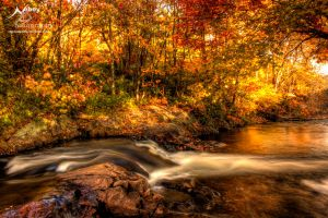 HDR Autumn River 2009 by Nebey