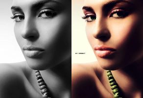 Colorization X by the-wabbit