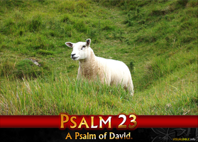 Psalm 23 | Videos | Multiple Languages by gabriellestory