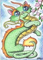 Funny cat Chinese Zodiac Year of the Dragon by KingZoidLord