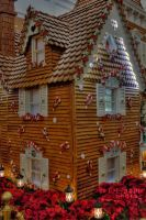Big Gingerbread House by JoeMyDodd