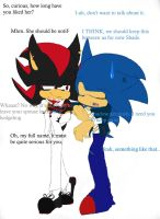 Shadow's and Sonic's Secret by BullSwag