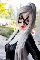 Black Cat 14 by Insane-Pencil