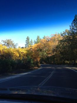 Fall Drive by HaroldPotter