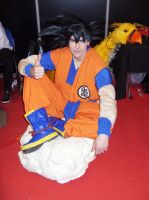 Son - The Legend - Goku by SonicPossible00
