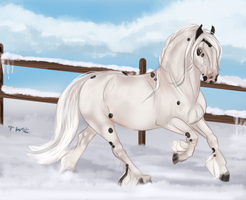 Snowy Rythm by The-White-Cottage