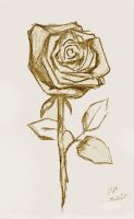A Rose by katmcgeer