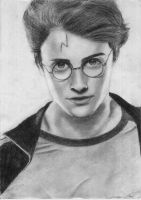 dan aka harry by bloodyiris