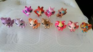 LPS Fox Collection by Vesperwolfy87