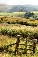 Moffat: Near Countryside by basseca
