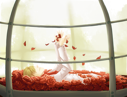 Hetalia: Flower Competition Entry by LumpOfCoal
