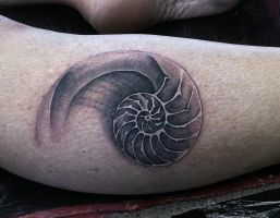 Shell by phoenixtattoos