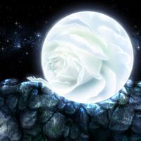 Commission - White Serenity by jocarra