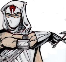 Stormshadow by SoundwaveLover
