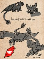 Toothless Sketch by temari-fox