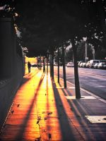 Sunset Street by martinemes