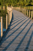 Golden Hour Walkway by sequential