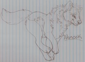 Nanook Sketch by MBPanther