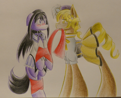 PMMM Ship Challenge Day 5 - HomuMami by WaterFerret