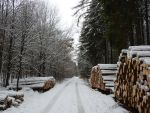 path of winter by Setril