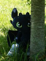 Toothless Sees You, Can You See Him? by BeautifulHusky