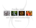 2010 Caedes.net Calendar V5 by caedes
