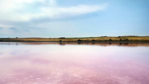 Pink Lake by McKenzie-James