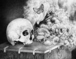 Skull and buterfly by Wheat-C