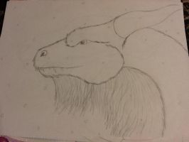 Bearded dragon by InvaderKat00