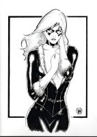 Black Cat Sketch by Ace-Continuado