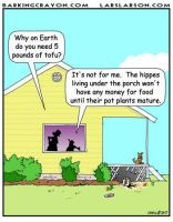 Porch Hippies Cartoon by Conservatoons