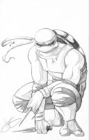 Raph Pencils by JenBroomall