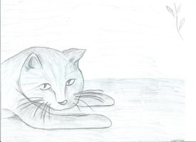 Cat Sketch by leafeh22