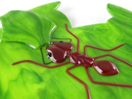 Leafcutter Ant fused glass plate by trilobiteglassworks