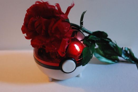 Roses and Pokeballs by MistressDrucilla