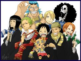 Accio ONE PIECE by Mcgooen