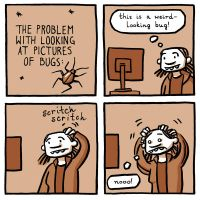 Bugs by mellapants