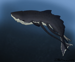 Exotic Whale by Braweria